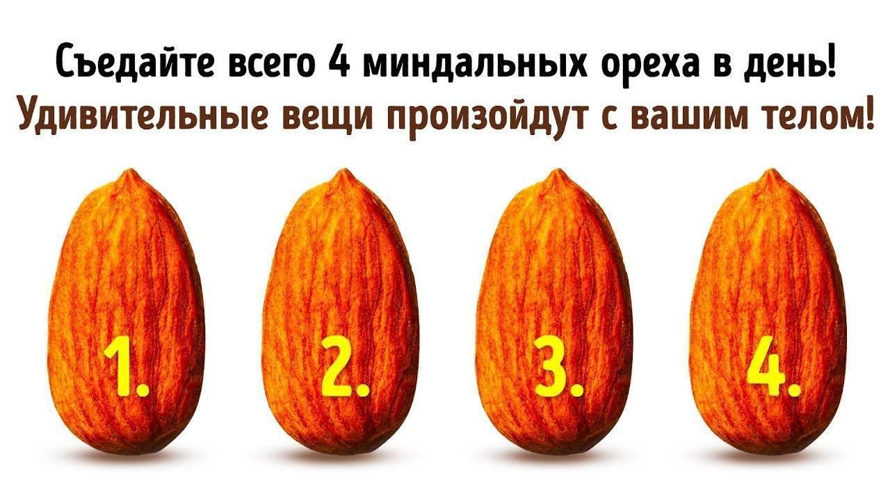 Миндаль: польза и вред для организма женщин и мужчин, калорийность