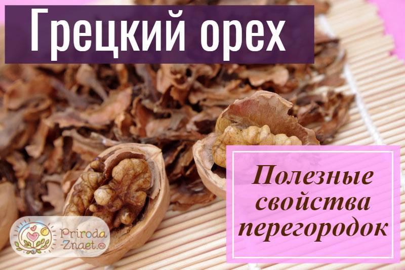 Лечебные свойства перегородок грецких орехов: при каких болезнях полезны, противопоказания, как заваривать и применять при сахарном диабете, узлах щитовидной железы