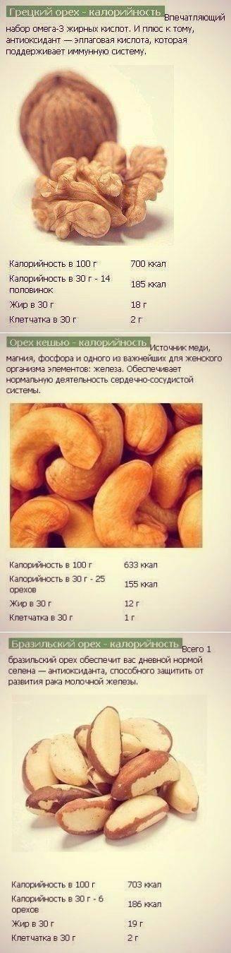 Грецкий орех очищенный: калорийность и содержание белков, жиров, углеводов