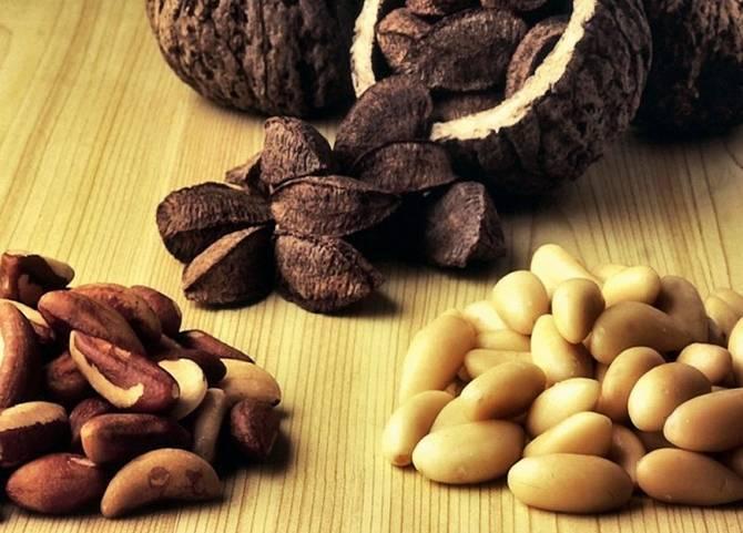 """""""бразильский орех — полезные свойства и противопоказания экзотического орешка"""""""