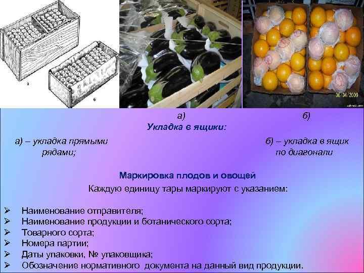 Правила хранения овощей в овощехранилищах: подготовка и особенности складирования