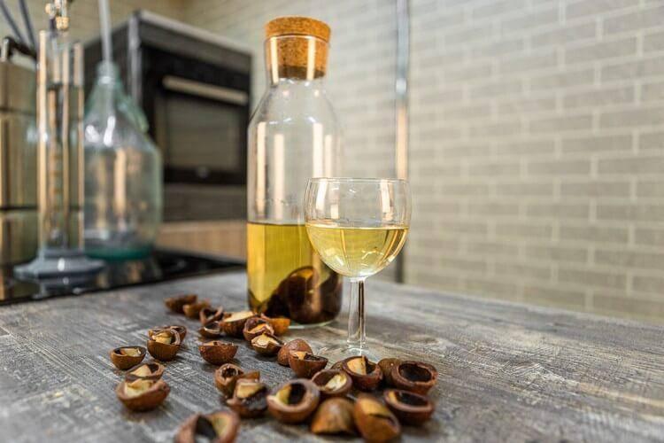 Настойка на скорлупе макадамии: польза и вред, рецепты приготовления