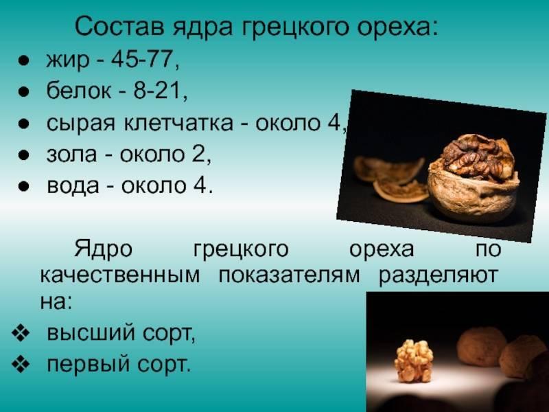 Вес орехов в скорлупе и без, сколько орехов в 30 граммах - орех эксперт
