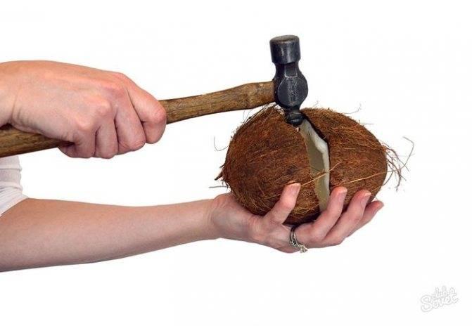 Экзотическая и ароматная мякоть кокоса: полезна ли, как достать из ореха, что из нее можно делать, как хранить?