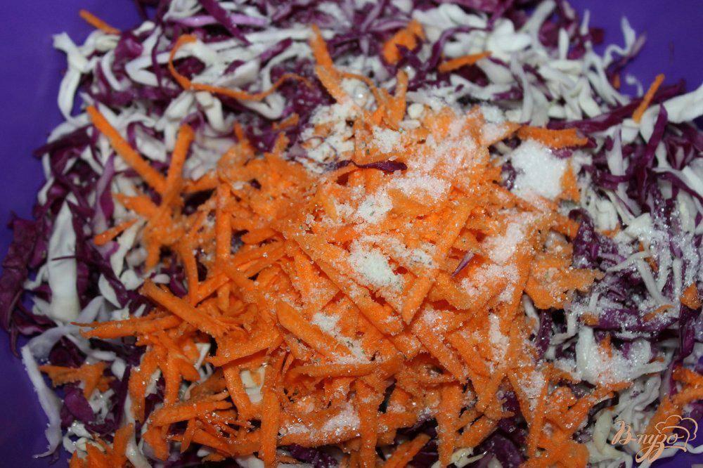Краснокочанная капуста на зиму: рецепты приготовления, способы консервирования, как замариновать кусочками