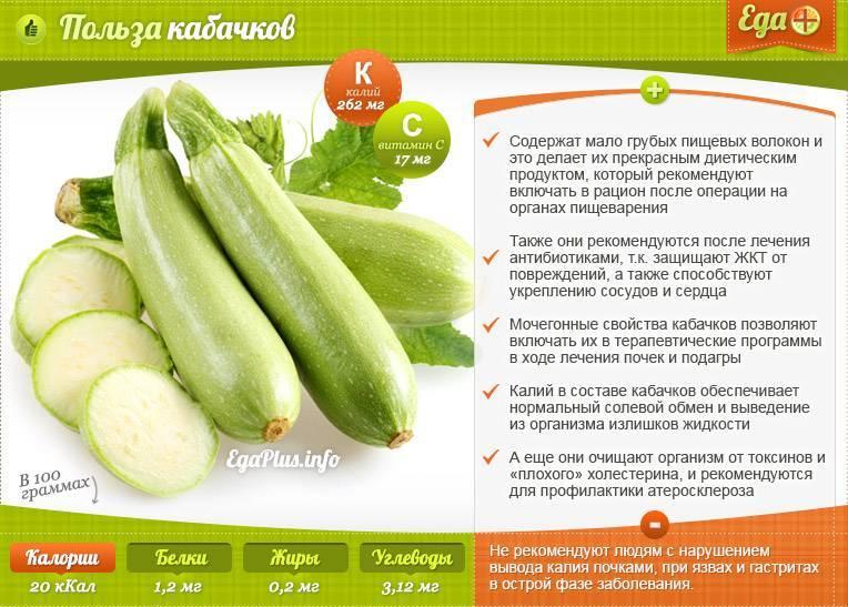 Жареные семечки из кабачков полезные. польза и вред кабачка для организма человека. правильное питание при онкологии