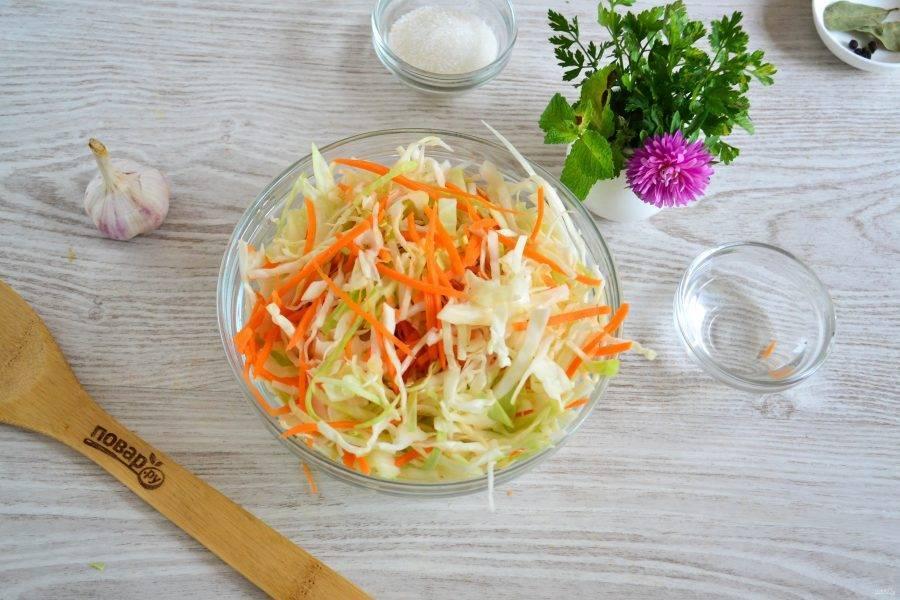 Капуста провансаль: рецепт на зиму и 14 быстрых способов приготовления