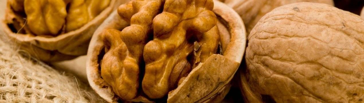 Прогорклые грецкие орехи: почему горчат, как убрать горечь - орех эксперт