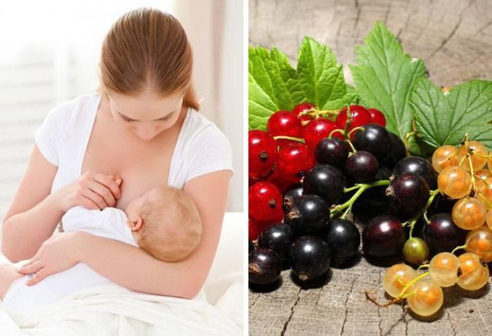 Фисташки при беременности: можно ли есть, польза и вред