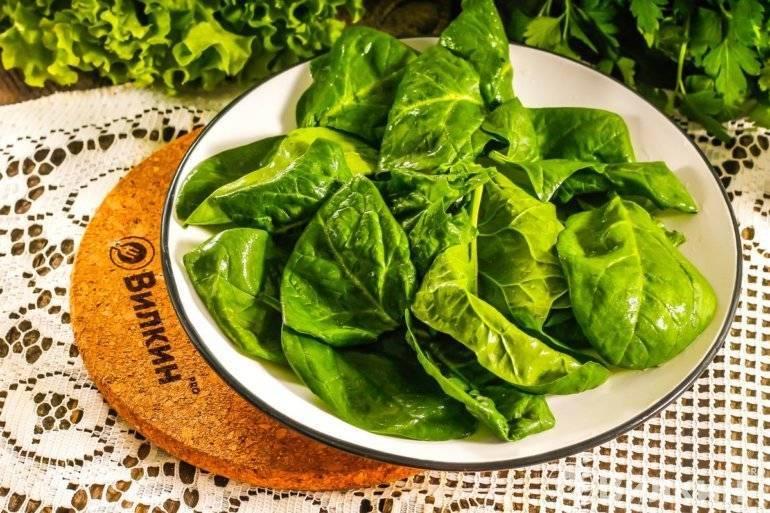 Как заготовить шпинат на зиму: 7 способов - ваш прекрасный сад