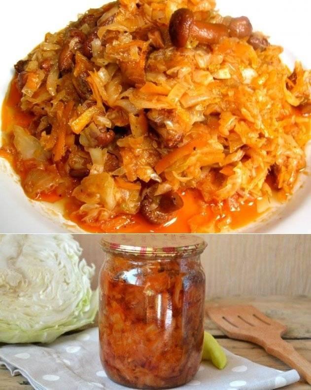 Грибная солянка с капустой на зиму: лучшие рецепты на любой вкус