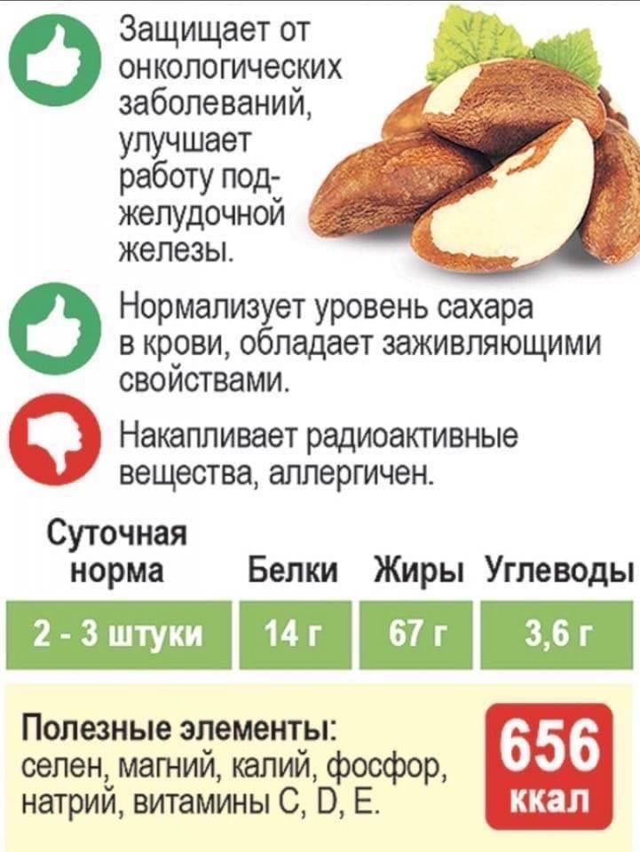 Cколько орехов можно съедать в день: норма – всё об орехах
