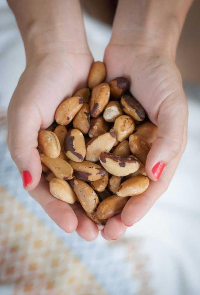 Полезные свойства и противопоказания бразильского ореха
