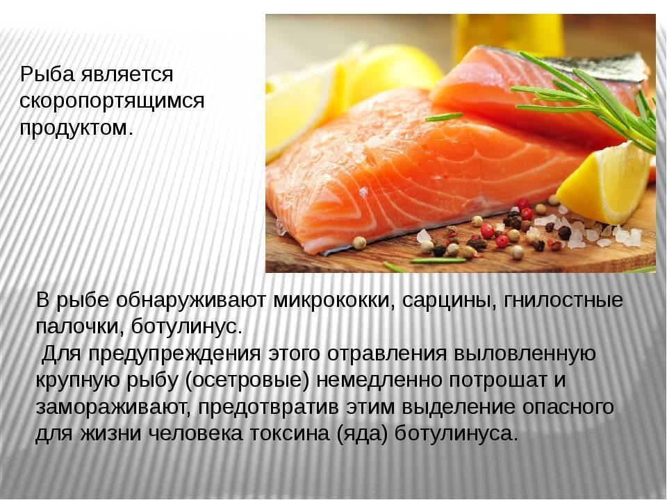Глава iii. производство охлажденной и подмороженной рыбы