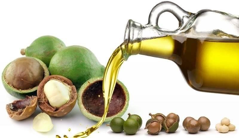 Чем полезен орех макадамия для мужчин: его целебные свойства, дозировка, польза и вред данного австралийского продукта для здоровья, а также противопоказания