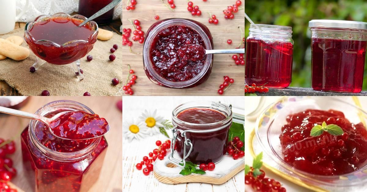 Джем из красной смородины – 7 интересных рецептов
