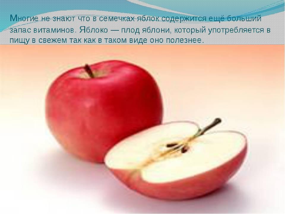 Полезны ли семечки от яблок: свойства, вещества, вред, рецепты