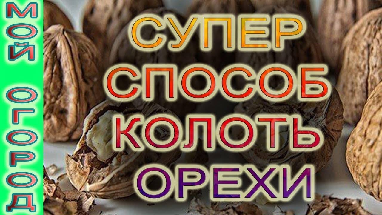 Как расколоть грецкий орех - способы, советы
