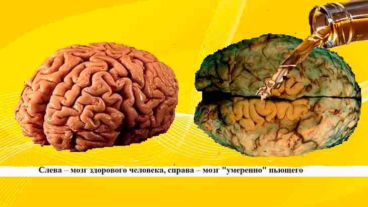 Правда ли, что экология стала лучше благодаря коронавирусу: 5 тезисов | журнал esquire.ru