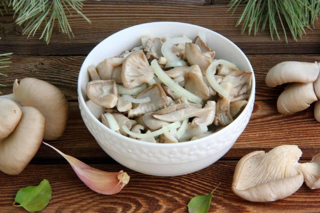 Маринование грибов на зиму в банках: рецепты в домашних условиях