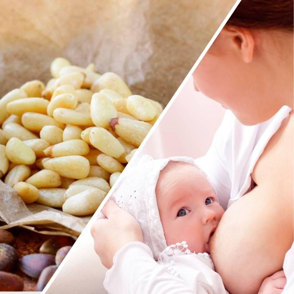 Можно ли кедровые орехи кормящей маме