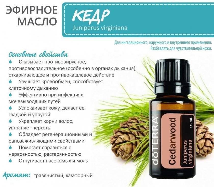 Эфирное кедровое масло для волос: особенности применения, советы и рекомендации