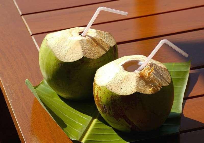Чем полезен кокос: польза и вред кокосовых орехов