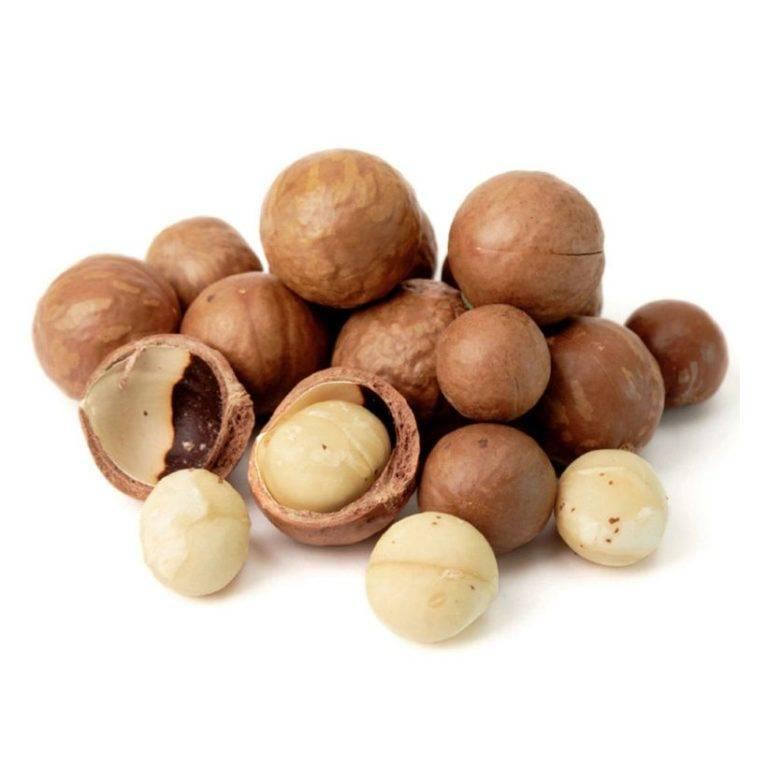 Орех макадамия: где растет дерево - его родина и страна происхождения и как выглядит королевский австралийский шоколадный сладкий круглый с прорезью царь плодов?