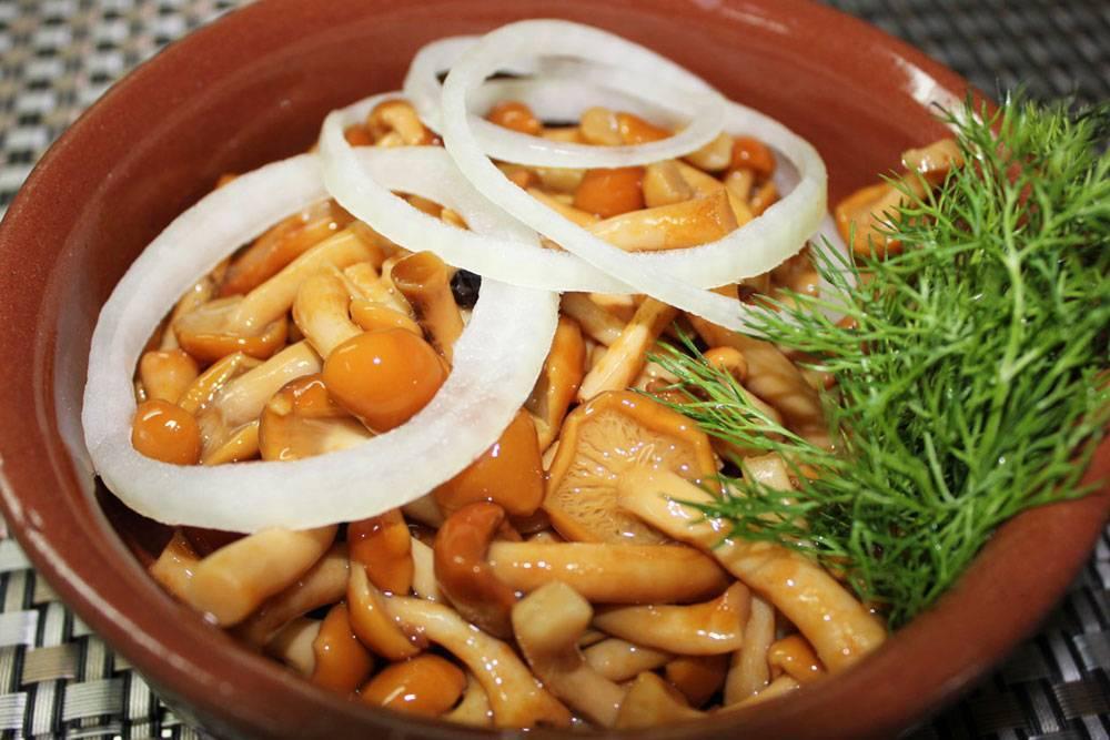 Белые грибы на зиму: топ-6 лучших рецептов, пошаговое приготовление