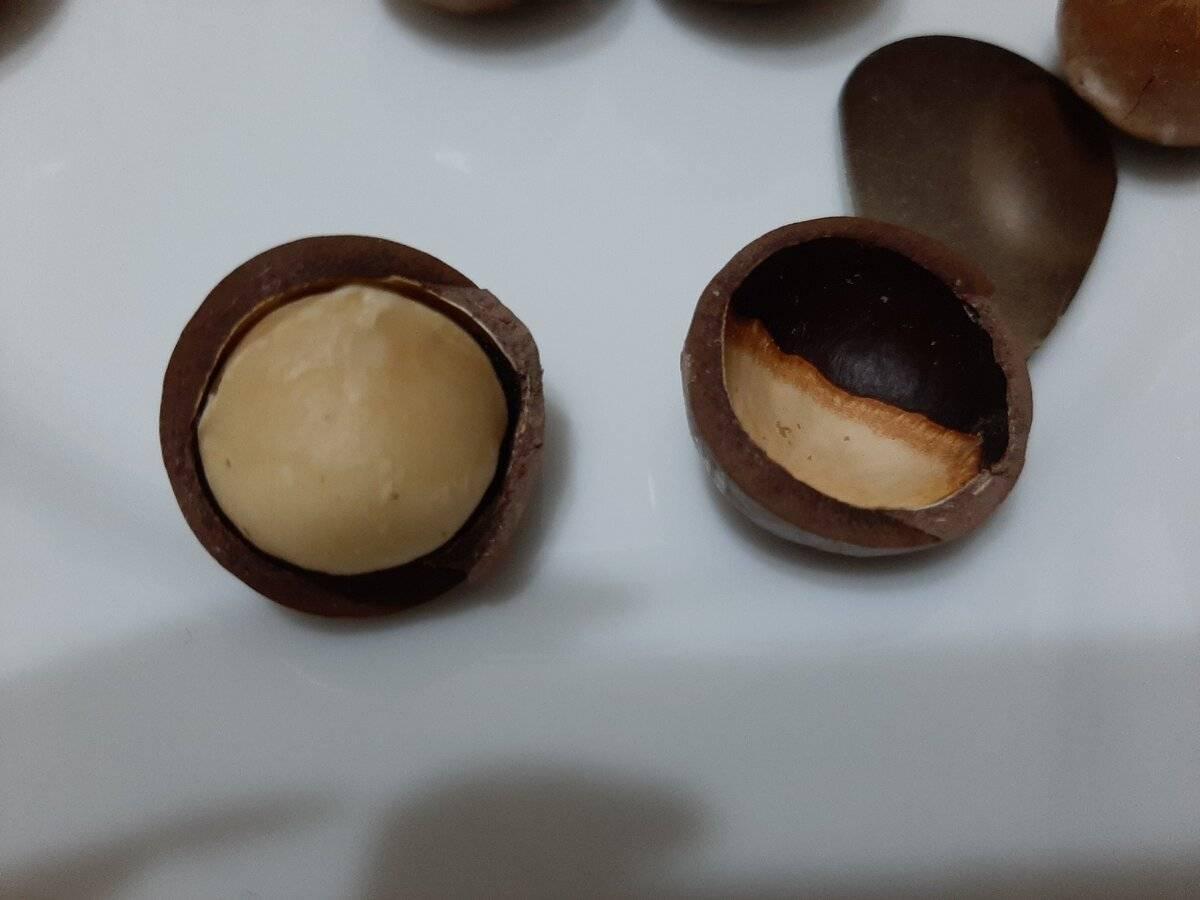 Как надпиливают орех макадамия и делают прорези на скорлупе? как надпиливают орех макадамия и делают прорези на скорлупе?