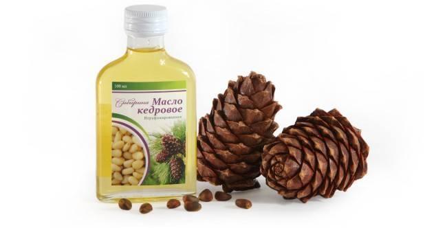 Кедровое масло: полезные свойства и вред