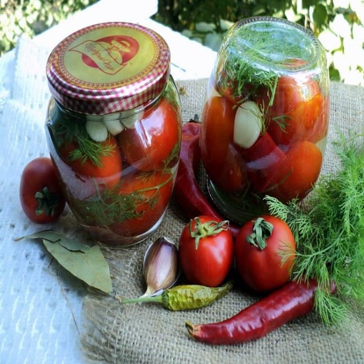Маринованные помидоры с чесноком и зеленью быстрого приготовления – 7 рецептов с пошаговыми фото