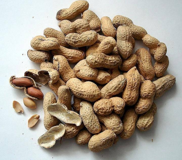 Орех арахис, польза и вред для организма человека