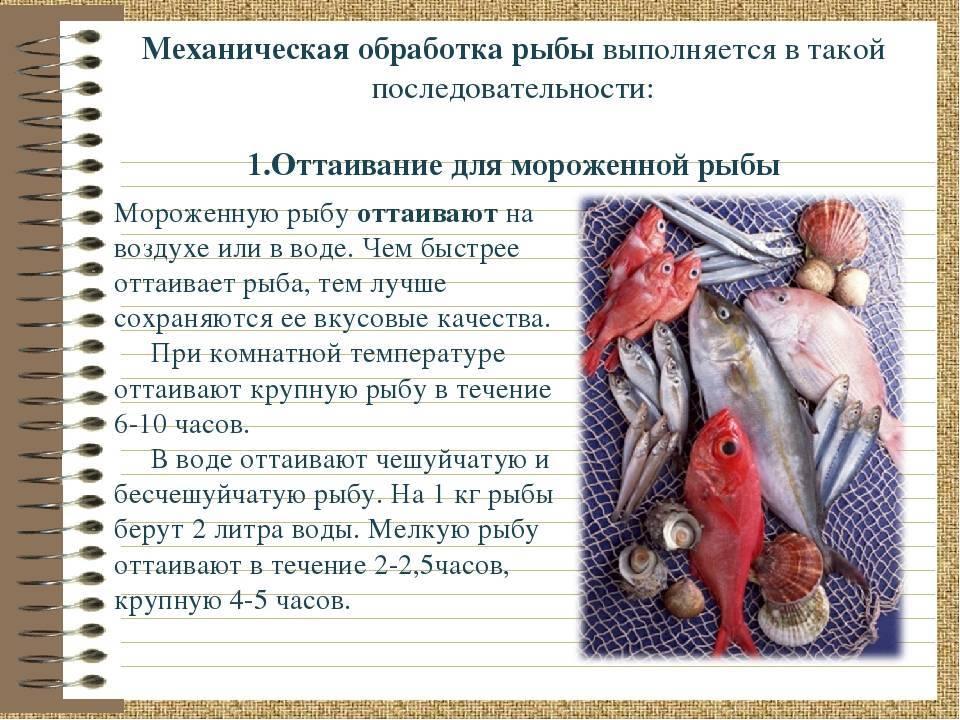 Глава iv. производство мороженой рыбы [1986 быкова в.м., белова з.и. - справочник по холодильной обработке рыбы]