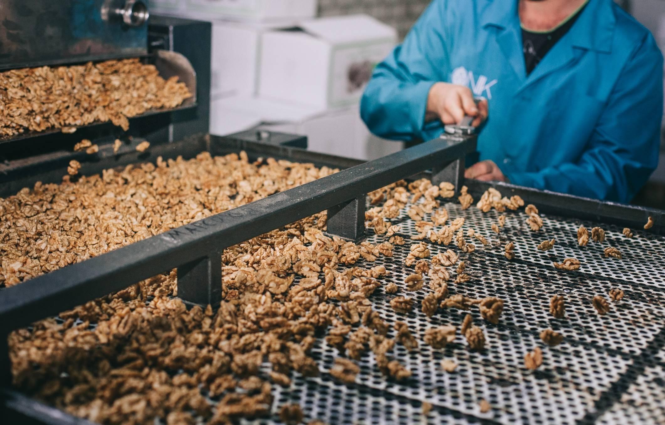 Срок годности кешью: где и как правильно хранить очищенные орехи в домашних условиях, чтобы продукт максимально долго оставался свежим?