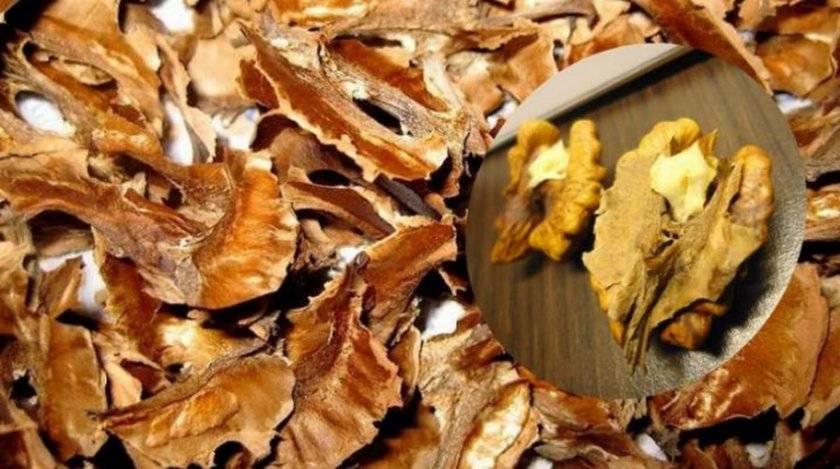 Какими лечебными свойствами обладает скорлупа грецкого ореха?