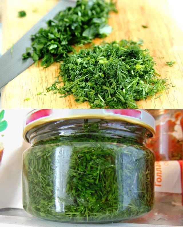 Зелень на зиму с солью и лучшие рецепты, как сушить свежую зелень
