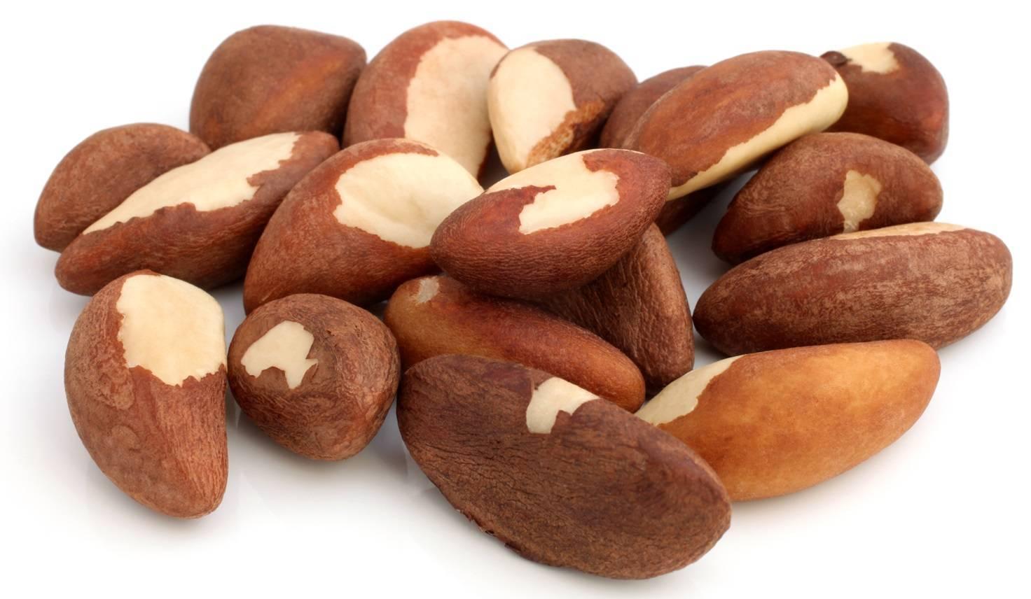 Бразильский орех: полезные свойства и советы экспертов
