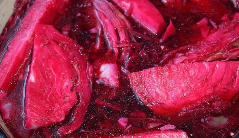 Капуста маринованная со свеклой: способы приготовления белокочанного овоща с буряком в банке или другой емкости, много домашних очень вкусных рецептов и фото блюда русский фермер