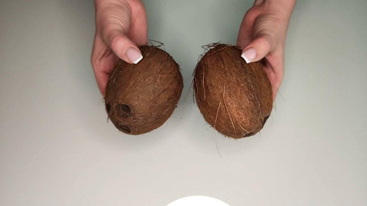 Что можно сделать из кокоса в домашних условиях