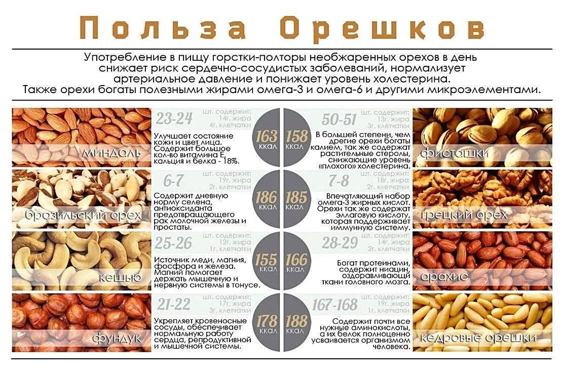Мускатный орех: свойства, состав, применение, побочные действия, кроме отравления, эффект при потенции, и что будет, если съесть, что дает настойка, как употреблять?