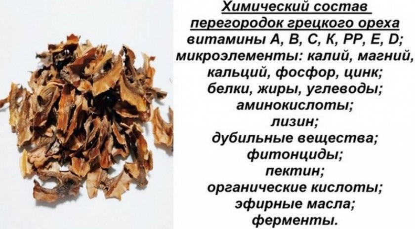 Перегородки грецкого ореха: лечебные свойства настойки, отвара