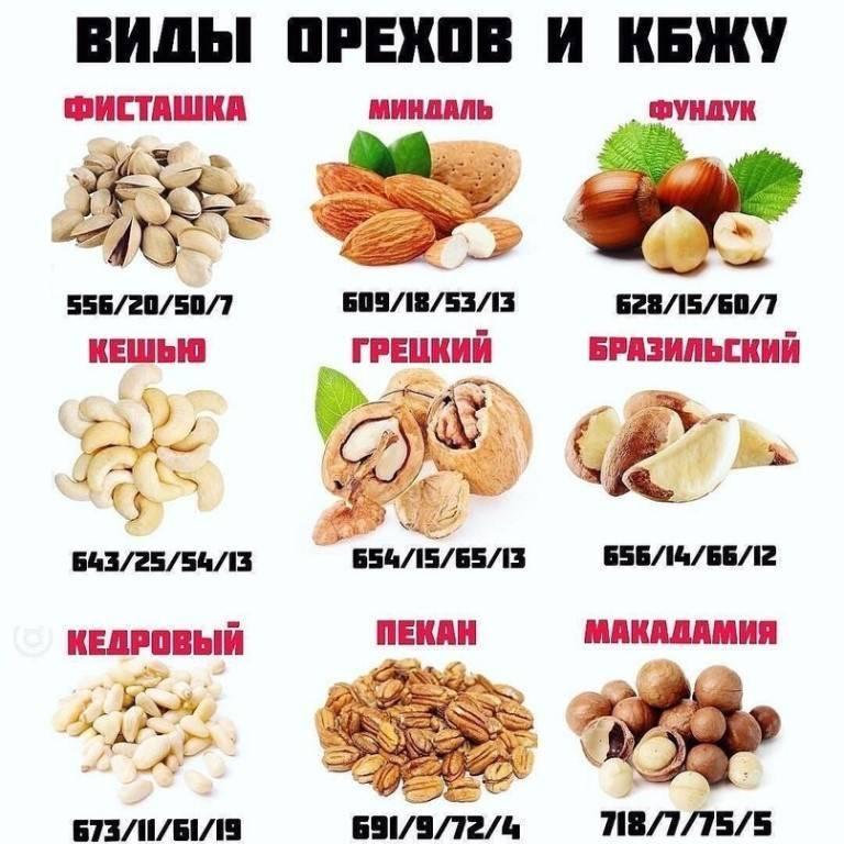 Может ли от грецких орехов быть запор
