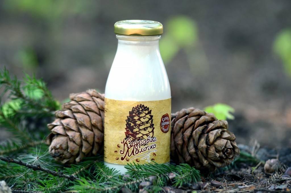 Кедровое молочко: лечебные свойства и противопоказания