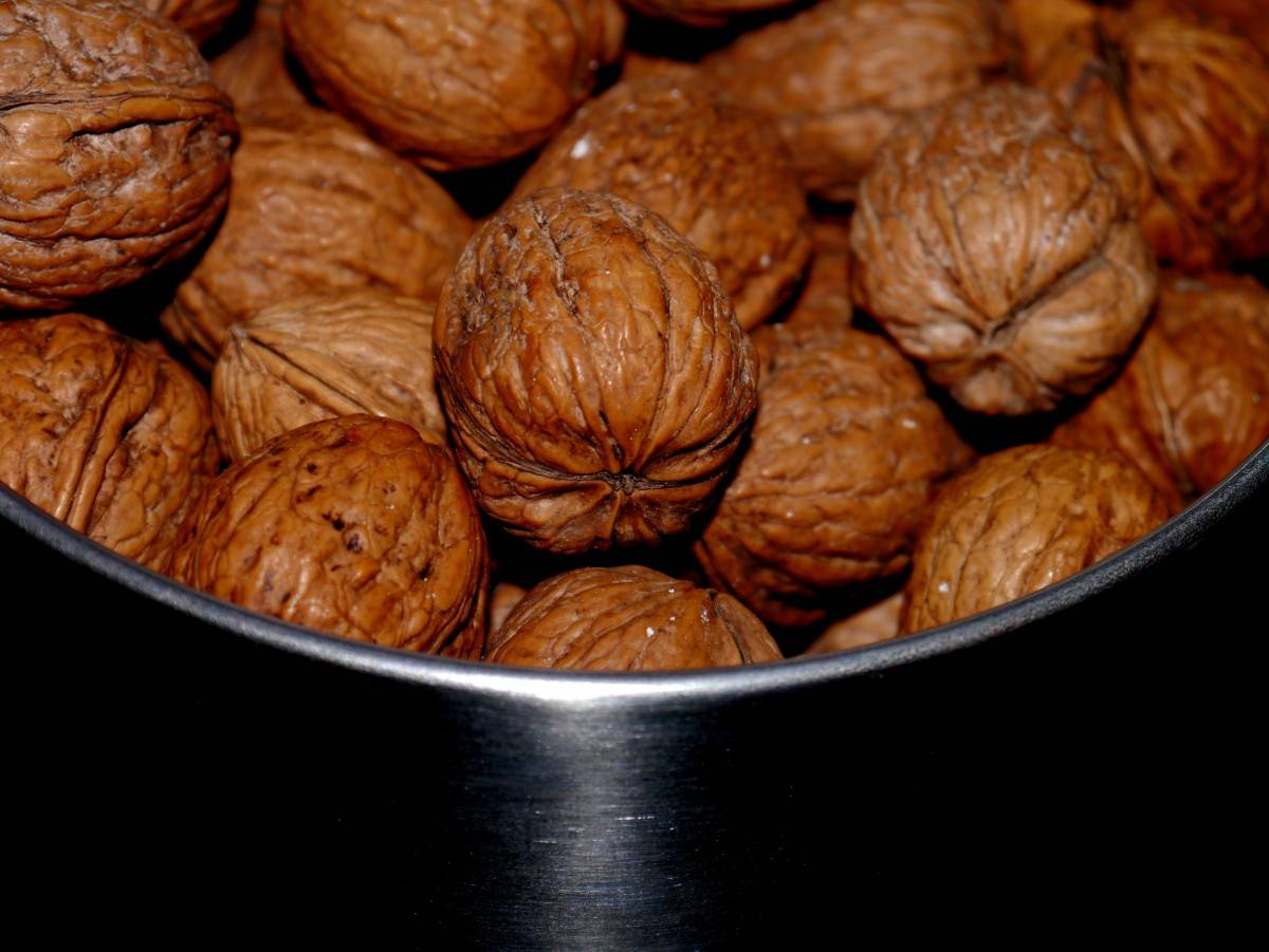 Если грецкие орехи прогоркли что делать – что делать, если орехи горькие | старорусская кухня 18, 19, начала 20 века | рецепты блюд русской кухни времен российской империи