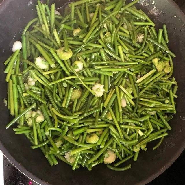 Стрелки чеснока на зиму - рецепт приготовления пикантной закуски на любой вкус!