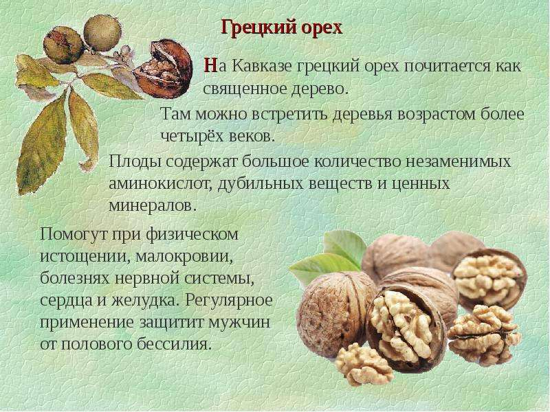 Можно ли есть орехи при гастрите – грецкие орехи с повышенной кислотностью