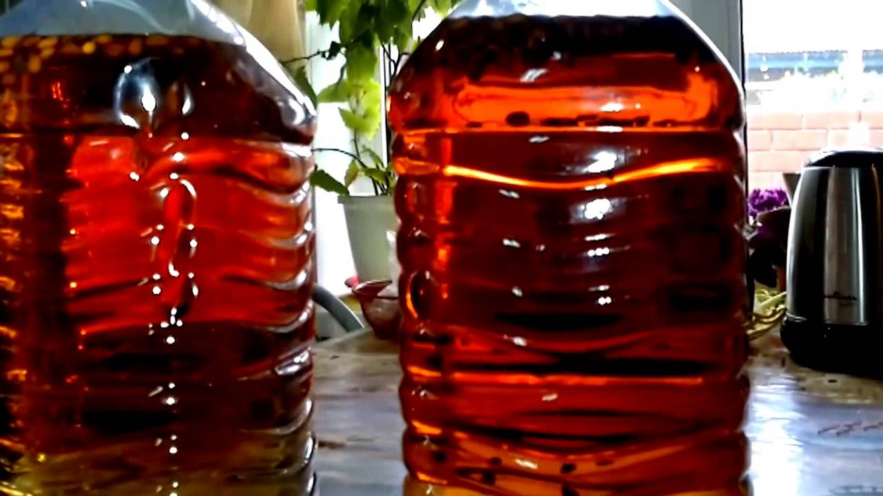 Настойка самогона на кедровых орехах: технология и рецепт приготовления