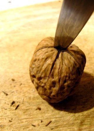 Как чистить грецкие орехи: 6 простых способов