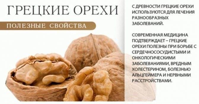 Гост 16833-71 ядро ореха грецкого. технические условия